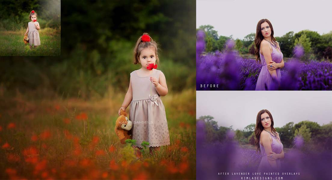 23 Wild Poppies And Lavender Love PNG Overlays Pack