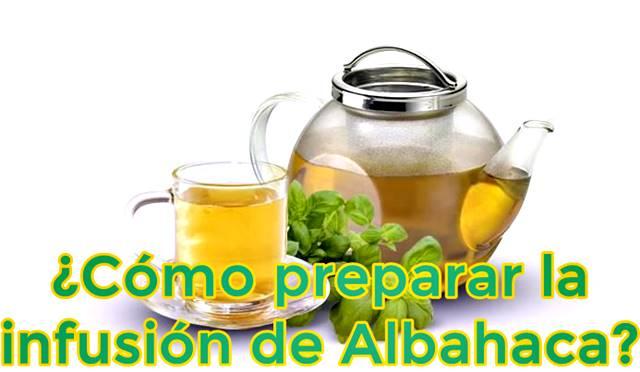¿Cómo se debe preparar la infusión de albahaca?