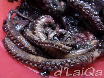 gurita (2)