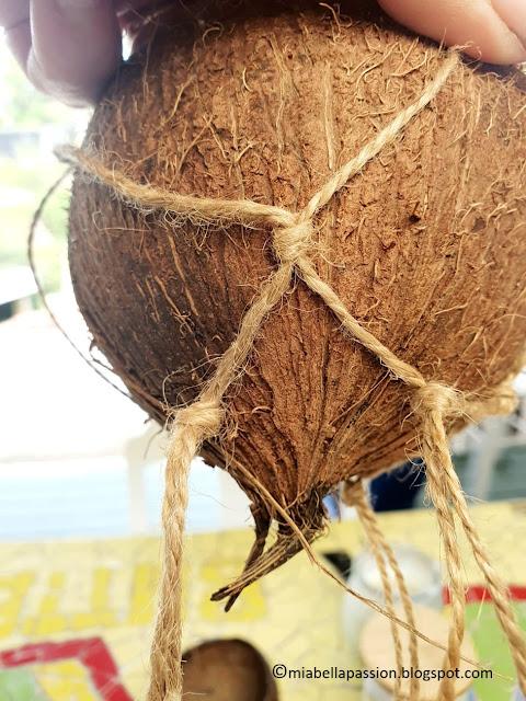 Coconut Hanging Planters