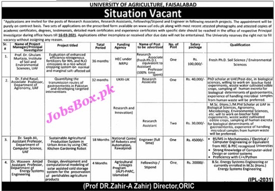 university-of-agriculture-faisalabad-uaf-jobs-2021