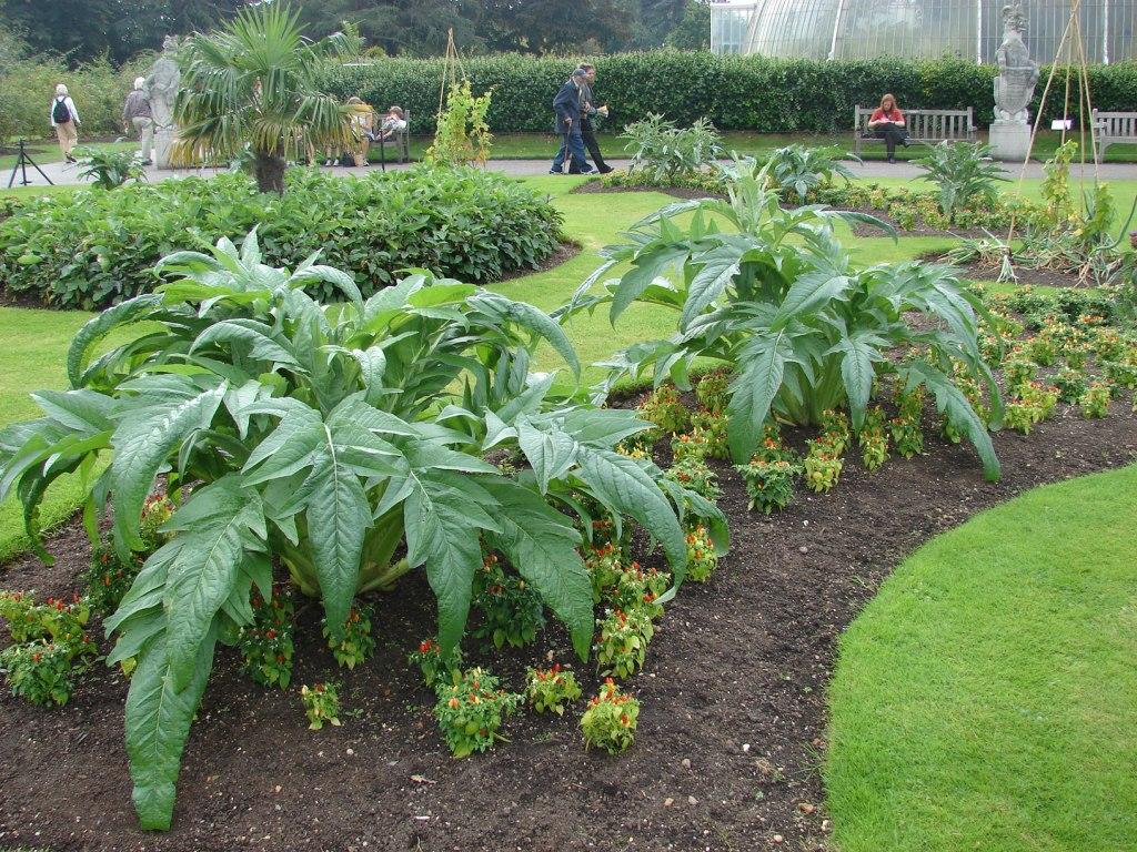 Paisajismo pueblos y jardines casa de las palmeras y sus parterre exteriores the palm house - Plantas aromaticas jardin ...