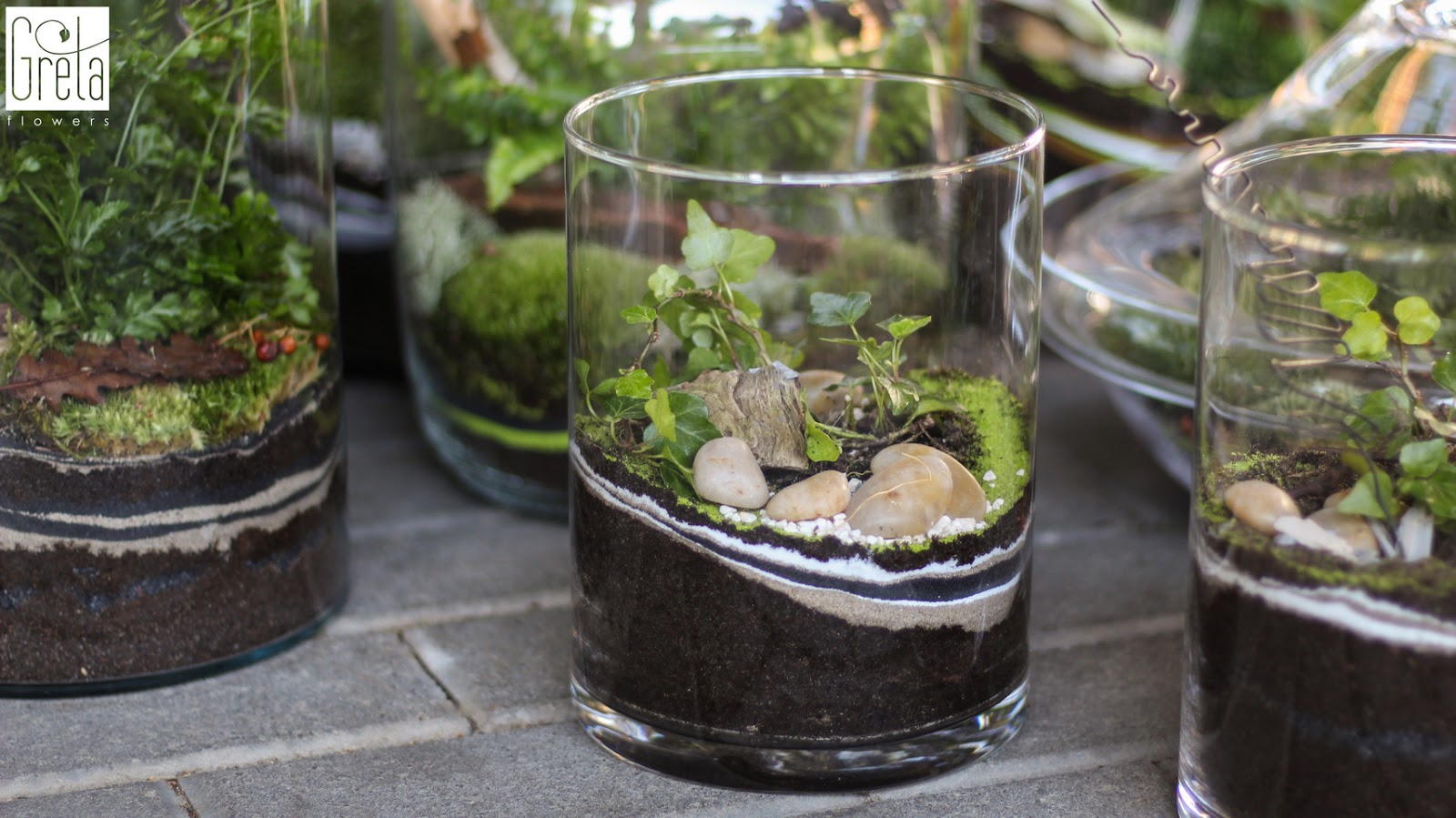 Las w słoiku, czyli jak uprawiać rośliny w szkle