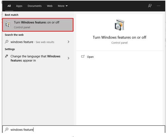 Windows Feature