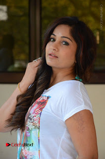 Actress Madhavi Latha Latest Stills at Swachh Hyderabad Cricket Press Meet  0014.JPG