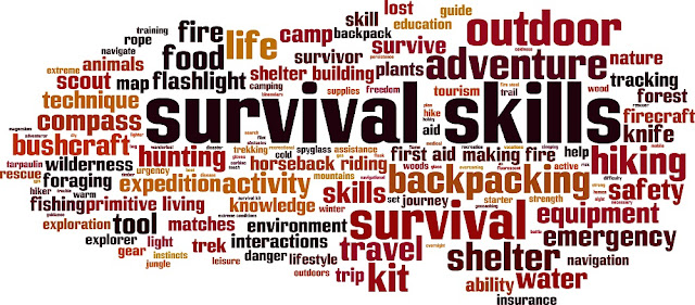 Free Survival Guide PDF