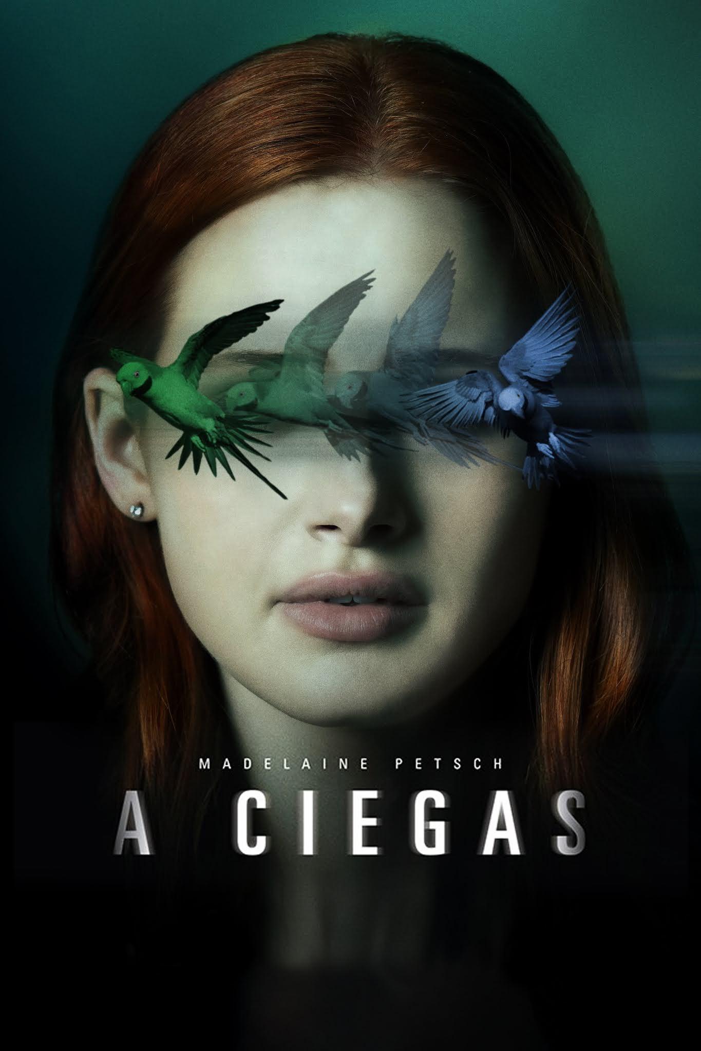 A Ciegas (2020) Web-DL 1080p Latino