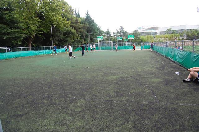 Lột bỏ cỏ nhân tạo cũ và dọn sạch sân