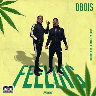 MUSIC: Dbois – Feeling – (Prod. T9 & Mixed. D Kay)