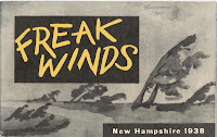 "A booklet titled ""Freak Winds."""
