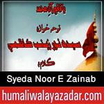 http://www.humaliwalayazadar.com/2015/11/syeda-noor-e-zainab-nohay-2016.html
