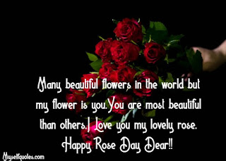 Happy Rose Day 2020 Images, Happy rose day 2020 photos, Rose day 2020 pics, rose day 2020 cards, happy rose day 2020 images download, happy rose day 2020 pictures