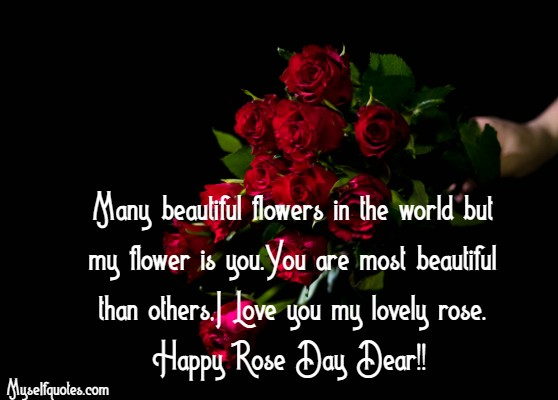 Happy Rose Day 2020 Images, Photos, Pics, Cards and Pictures
