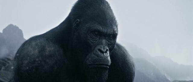 The Legend of Tarzan 2016 Dual Audio Hindi 720p BluRay