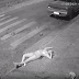 Cenas fortes: marido tenta forjar álibi após esfaqueiar mulher e deixa-la morrer na calçada