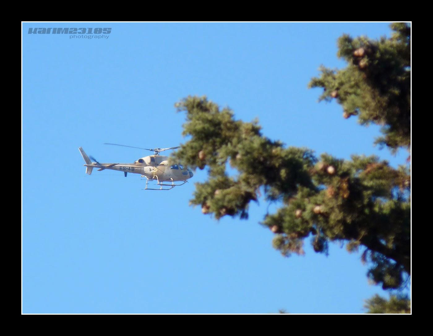 صور مروحيات القوات الجوية الجزائرية Ecureuil/Fennec ] AS-355N2 / AS-555N ] - صفحة 3 P1020153