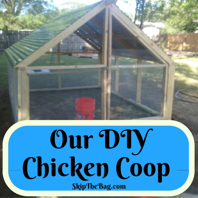 Our DIY Chicken Coop. How we built and set up our coop