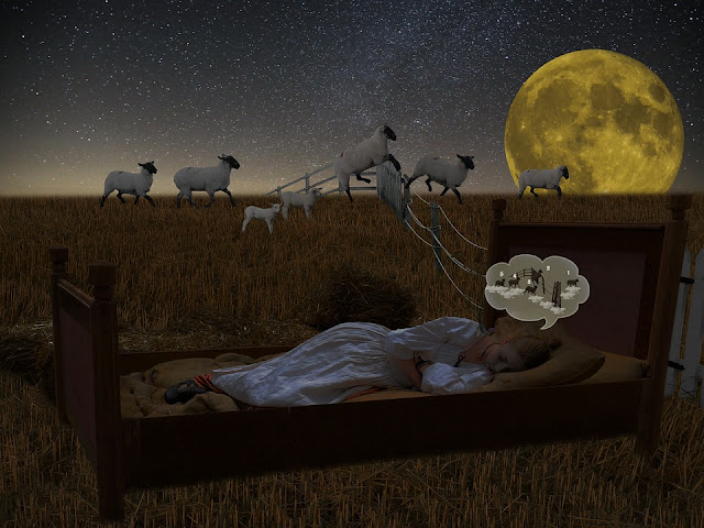 counting sheep to get asleep