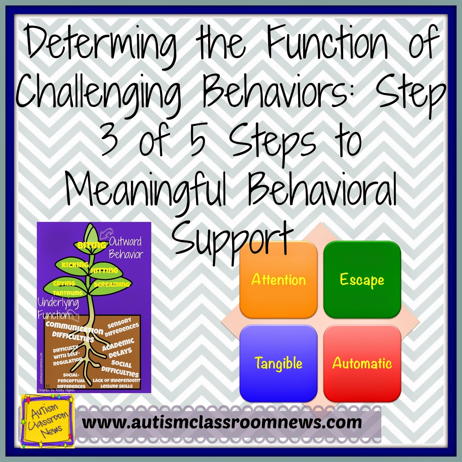 Determining The Function Of Challenging Behaviors Step 3
