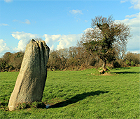 http://www.paintwalk.com/2016/03/normandy-megalith-high-man-of-hacouville.html