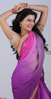 Bollywood Actress in Saree Spicy Pics 10.jpg