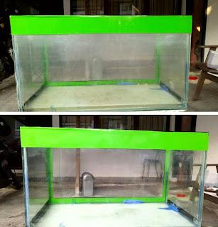 Cara membersihkan kaca aquarium berkerak