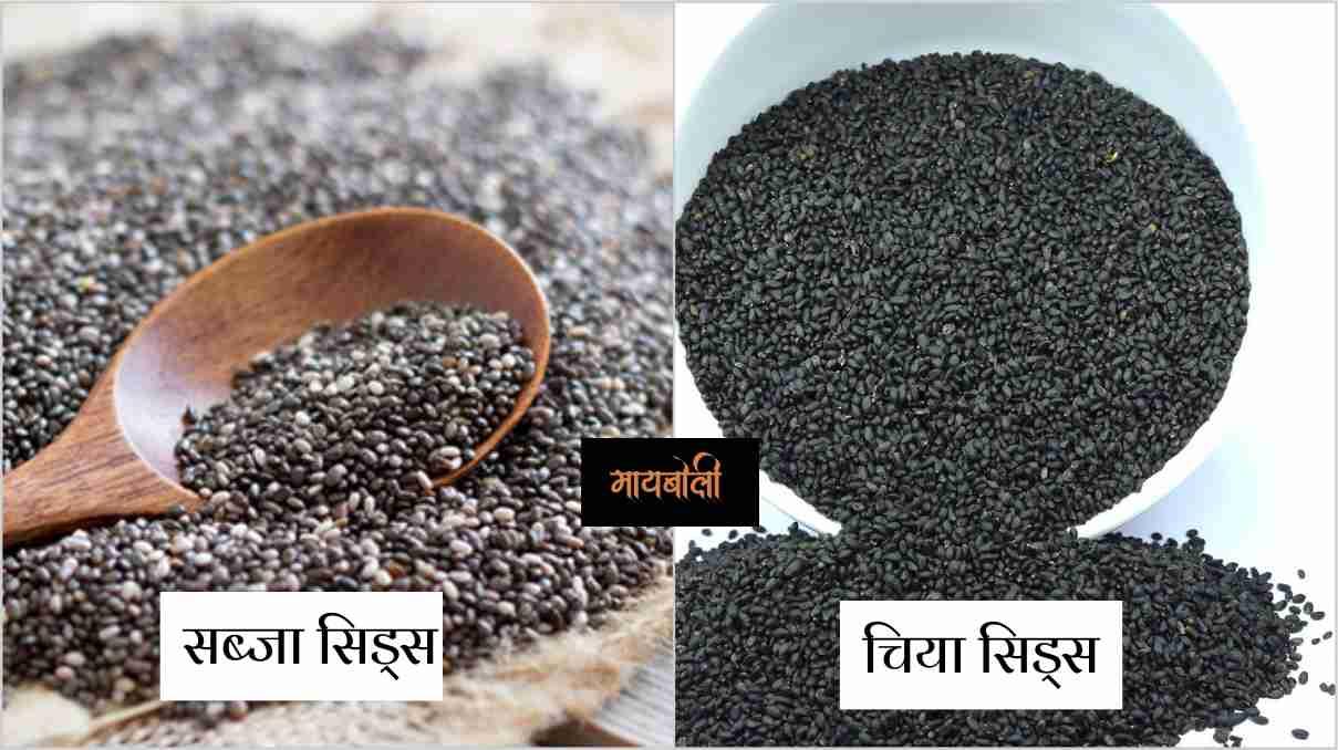 Chia Seeds Meaning in Marathi - चिया सिड्स ला मराठी मध्ये काय म्हणतात