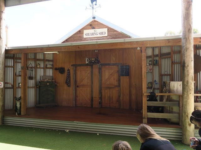 shearing shed, Maru Koala and Animal Park, melbourne, australia
