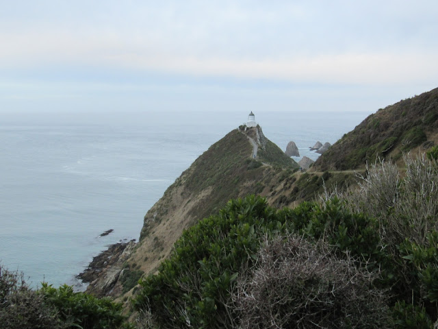 Faro de Nugget Point