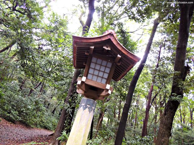 Detalles del Camino en el Santuario Meiji, Tokio