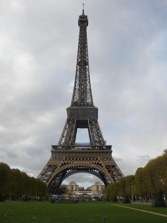 La Torre Eiffel tienen más de 300 metros de altura.