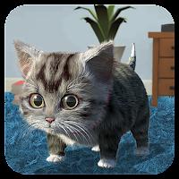 Cat Simulator – and friends Mod Apk