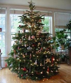 تفسير شجرة عيد الميلاد في الحلم