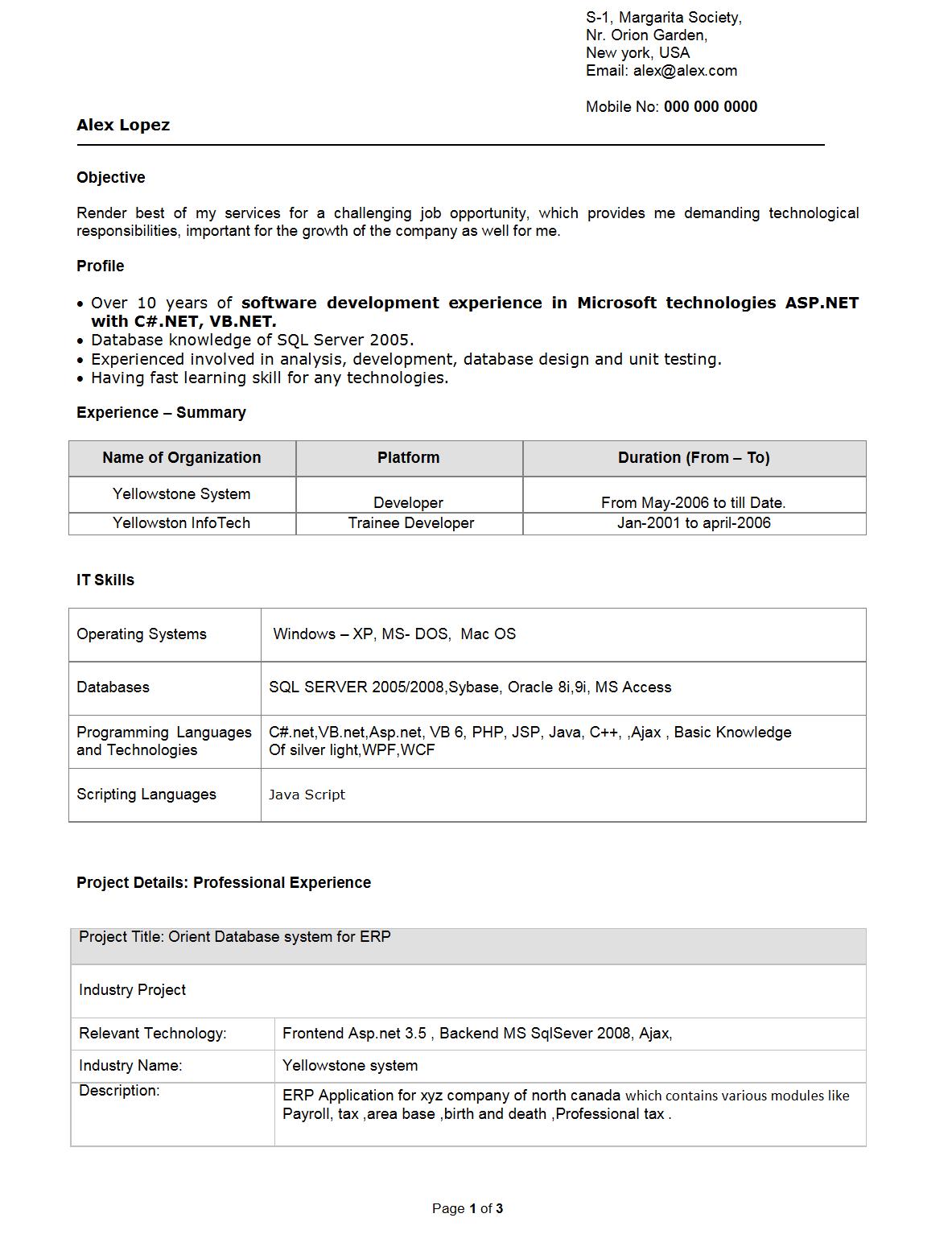 software developer resume format