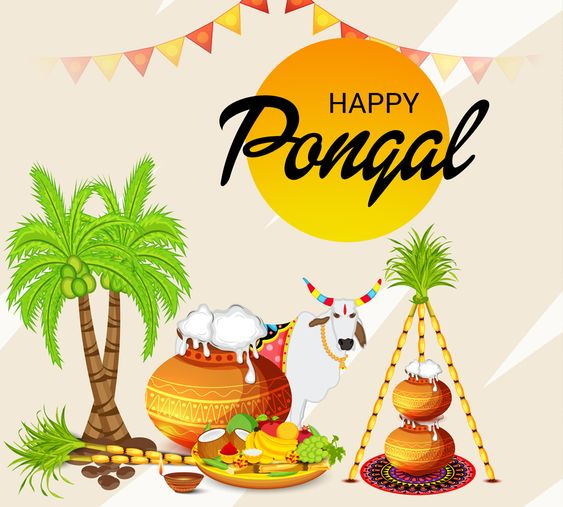 Pongal information in Hindi