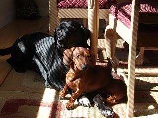 Sades and Louie