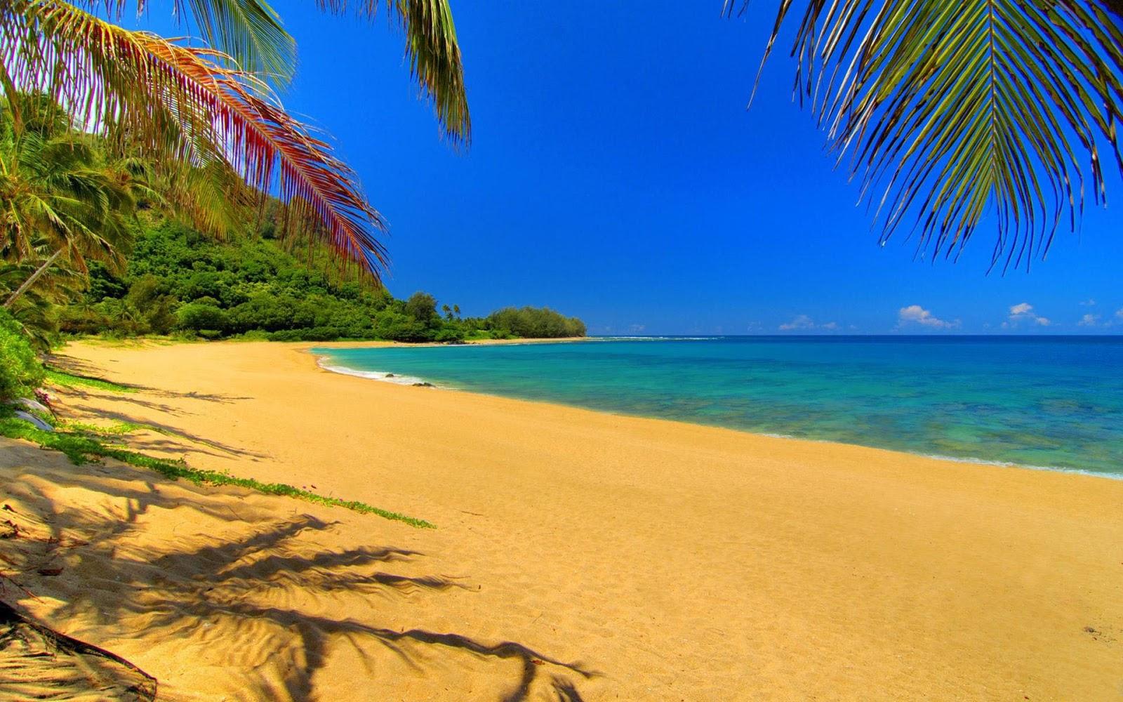 Gl Beach Kauai Hawaii The Best Beaches In World