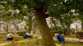 Kenroku-en Gardens Gardeners hand picking weeds