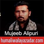 https://www.humaliwalyazadar.com/2019/02/mujeeb-alipuri-noha-ayyam-e-fatima-2019.html