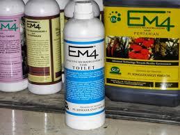 Membuat EM4 atau Bakteri pengurai