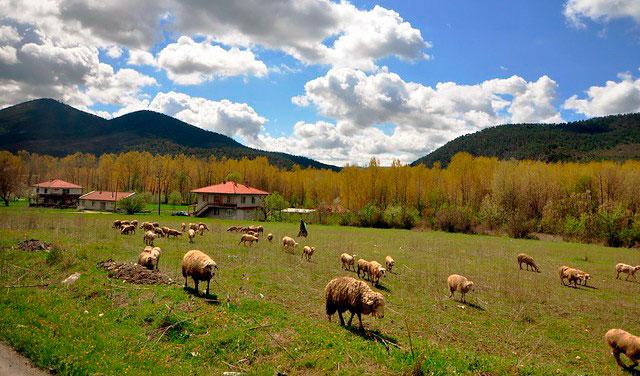 Sakarya'nın Taraklı ilçesi doğal güzellikleriyle kampçıların ilgisini çekiyor.