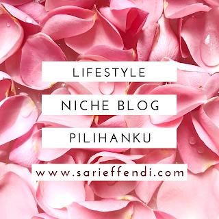 pilihan niche blog yang bisa dimonetasi