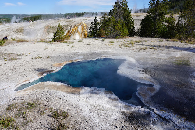 yellowstone geyser pool cosa vedere