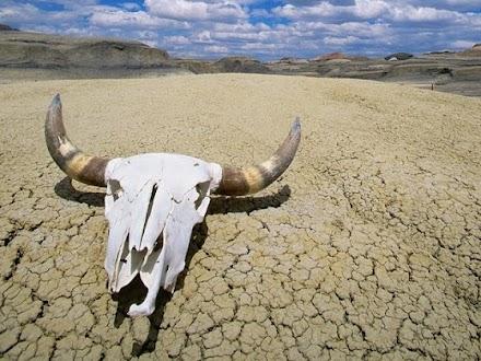 Επισιτιστική κρίση από τα ακραία καιρικά φαινόμενα