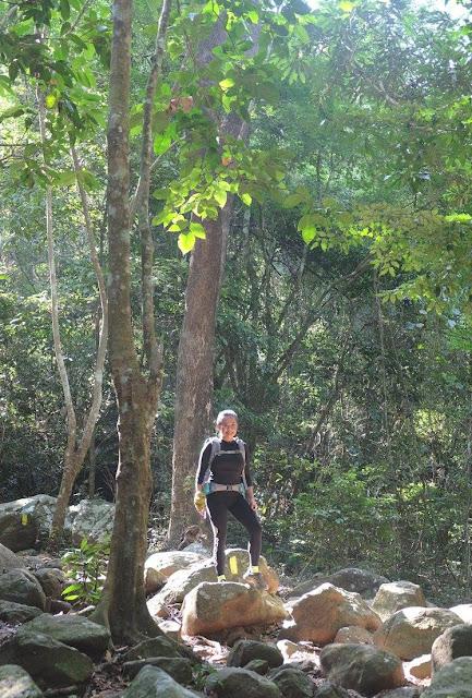 Mt. Arayat trail