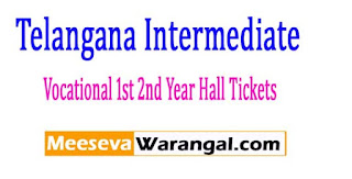 Telangana Intermediate Vocational 1st 2nd Year Hall Tickets 2017