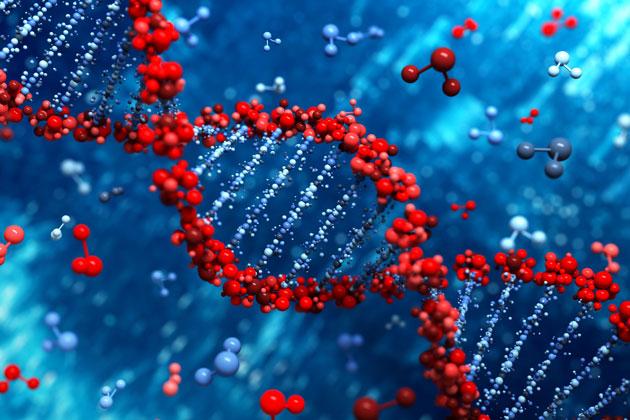 O campo de estudo da Biologia Molecular