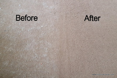 Gtech K9 AirRam before and after carpet hair