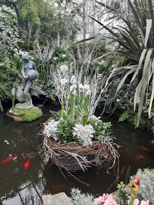 Allan Gardens Conservatory 2019 Winter Flower Show three by garden muses--not another Toronto gardening blog