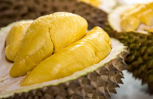 Effective Ways to Eliminate the Smell of Durian - CORNERS